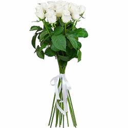 Букет из 15 белых российских роз-премиум